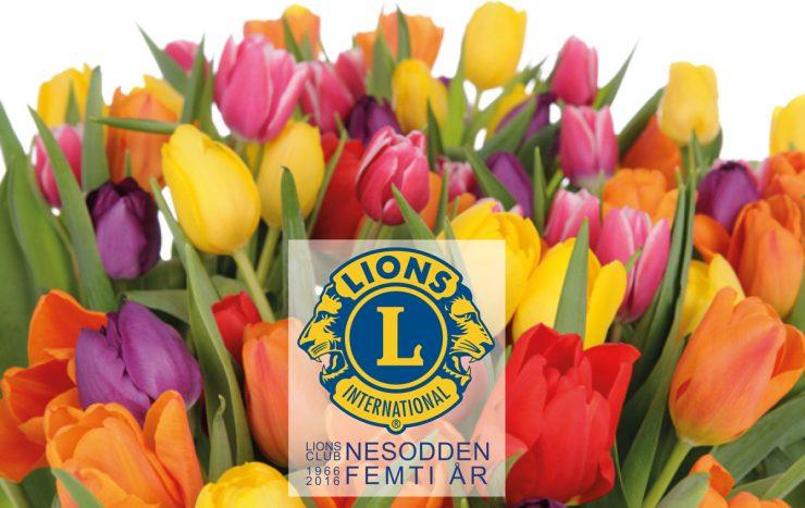 Lions Club Nesodden fyller 50